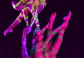 Von Tanz bis Turnen: Sportshow der Superlative